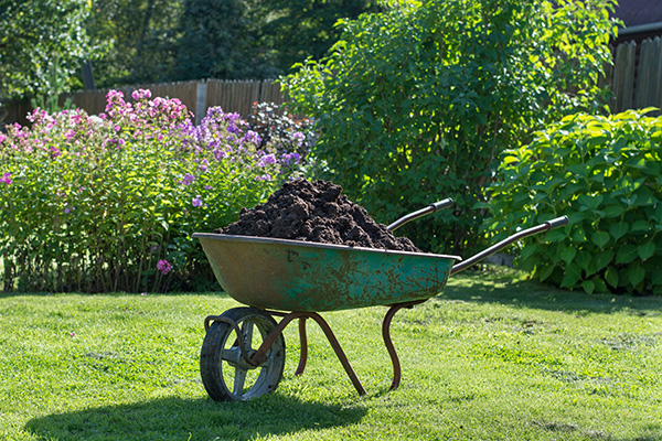 Premier Lawn Service in Plymouth MI - M&D Lawn & Landscape - fertilize